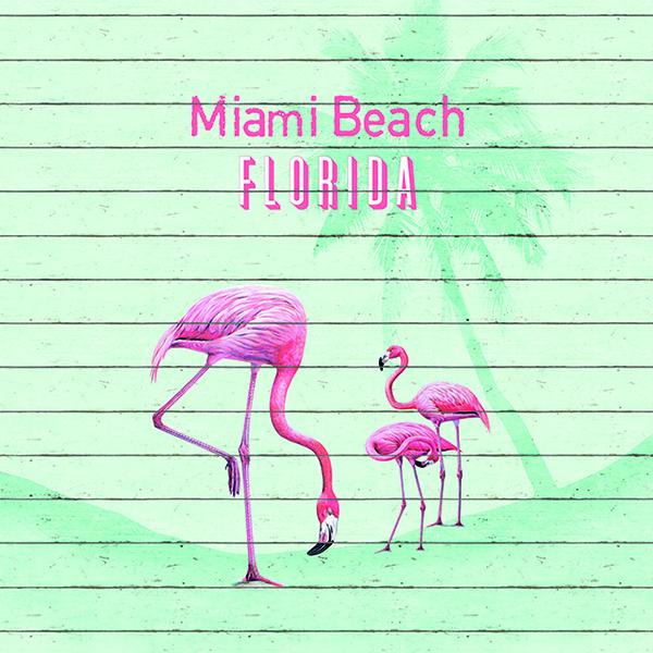 Barbara Becker Tapeten Kollektion : Barbara Becker – b.b home passion – Kollektionen – 2018 – Miami Style